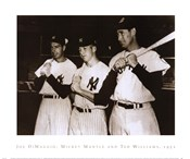 Joe DiMaggio, Mickey Mantle &amp; Ted Williams, 1951