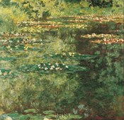Pool with Waterlilies, 1904
