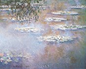 Waterlilies, 1903