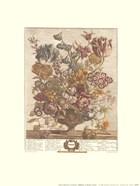 April/Twelve Months of Flowers, 1730