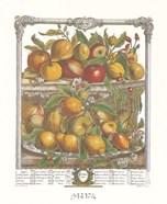 April/Twelve Months of Fruits, 1732