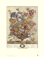 April/Twelve Months of Flowers, 1730