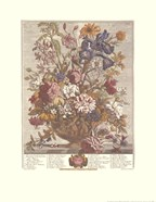 June/Twelve Months of Flowers, 1730