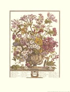 October/Twelve Months of Flowers, 1730
