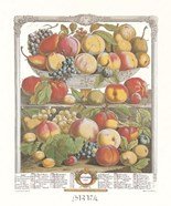 September/Twelve Months of Fruits, 1732