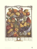 Twelve Months of Fruits, 1732/November