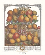 Twelve Months of Fruits, 1732/December