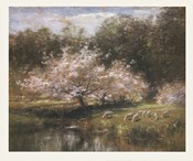 Sheep Grazing Under Apple Blossoms