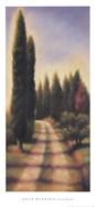 Tuscan Road I