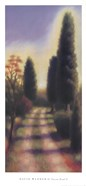 Tuscan Road II