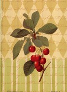 Botanical Cherries