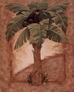 Monkey Palm I