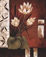 Lotus Silhouette II