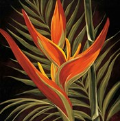 Birds of Paradise I