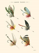 Lake Flies I