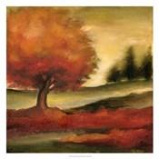 Harvest Maple II