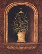 Olive Topiary Niches I - special