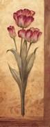 Grandiflora IV - mini