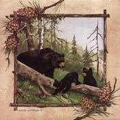 Black Bears IV