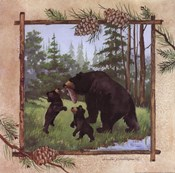 Black Bears III