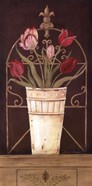 Tulipe Final