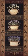 Teacup Herbs II