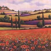 Fields of Poppies I
