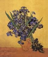 Les Irises