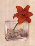 Red Flower In Bowl With Rocks