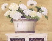 White Flowers In Wooden Bucket