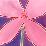 Pink Flower With Purple Background