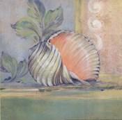 Tranquil Seashells II