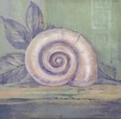 Tranquil Seashells III - Mini