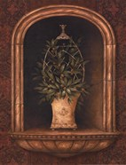 Olive Topiary Niches I - Mini