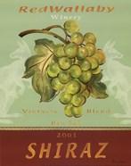 Shiraz - Mini
