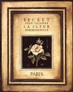 Les Fleurs De Paris I - Mini