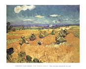 Harvest in Provence of Wheat Field with Sheaves, c.1888