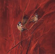 Crimson Sparrows II