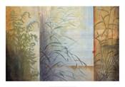 Ferns & Grasses
