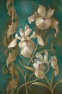 Irises on Teal