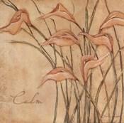 Calm - Floral