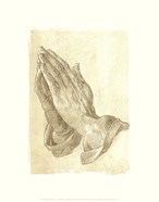 Praying Hands, c.1508 (sepia)