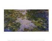 Water Lilies, 1917/1919