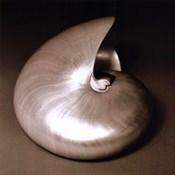 Nautilus I