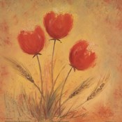 Orange Tulips and Wheat