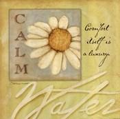 Calm - Daisy