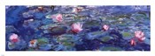 Water Lilies (blue and purple)