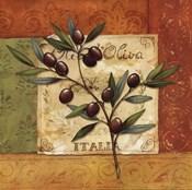 Olives du Midi II