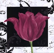 Damask Tulip IV