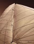 Windward Sail III